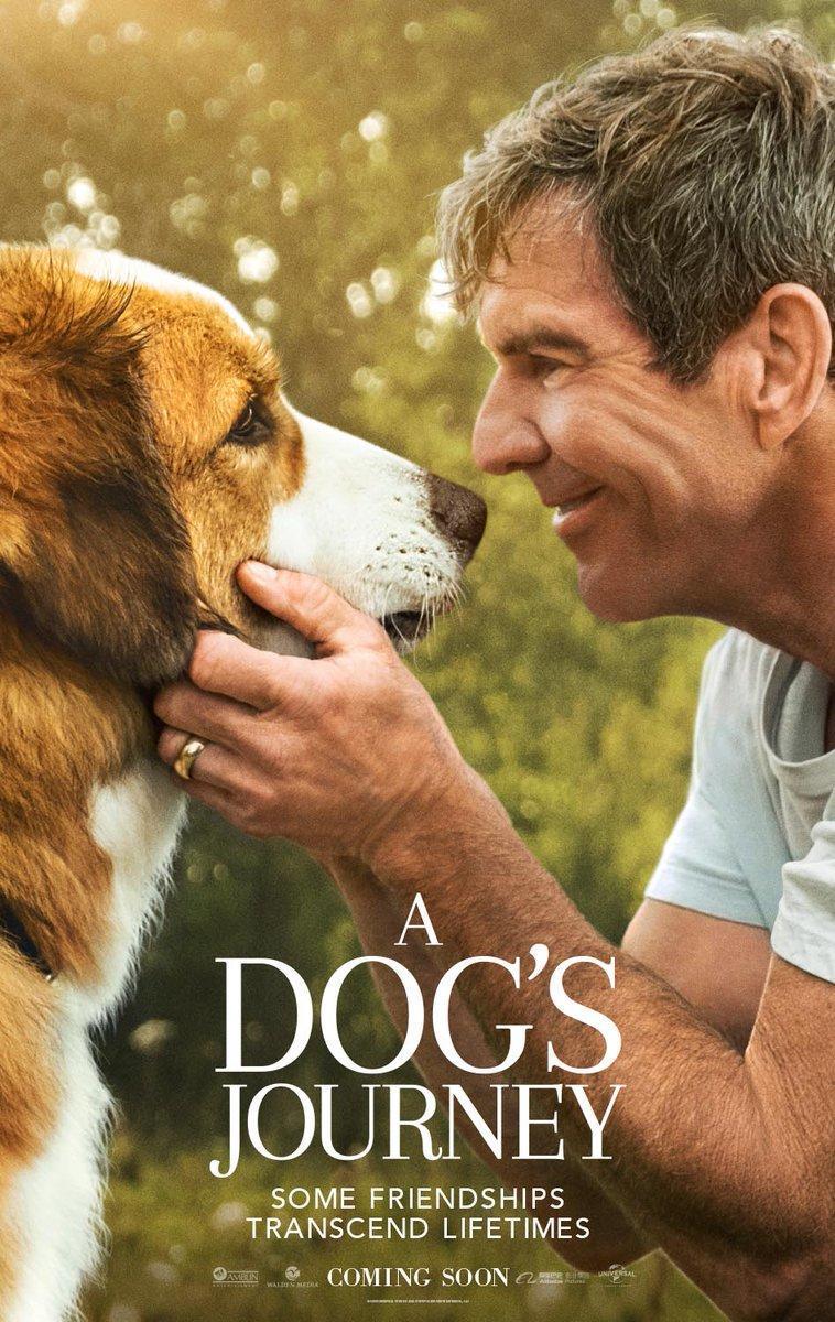 A Dog's Journey [2019][Español Latino][1080p][MEGA y GD]